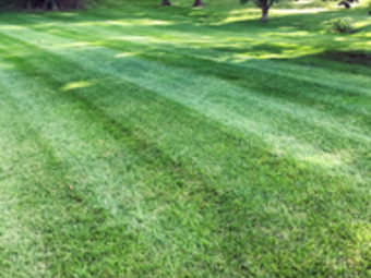 Yard mowing company in Cincinnati, OH, 45247