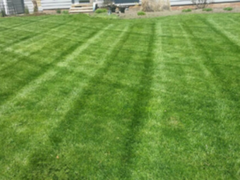 Yard mowing company in Brook Park, OH, 44142