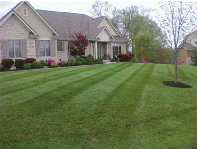 Yard mowing company in Walton, KY, 41094