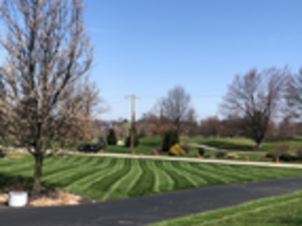 Yard mowing company in Independence , KY, 41051