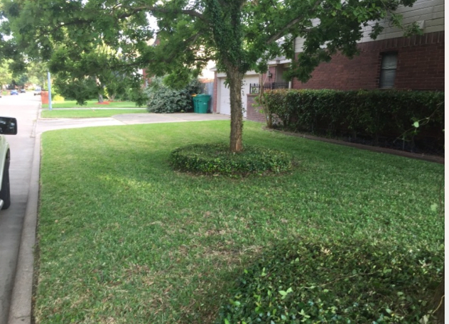 Yard mowing company in Houston, TX, 77014