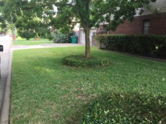 Yard mowing company in Houston, TX, 77014