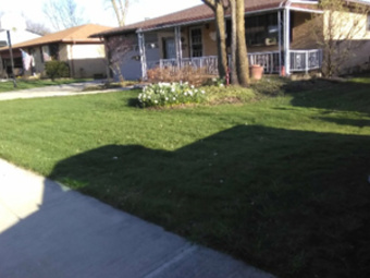 Yard mowing company in Middleburg Heights, OH, 44130