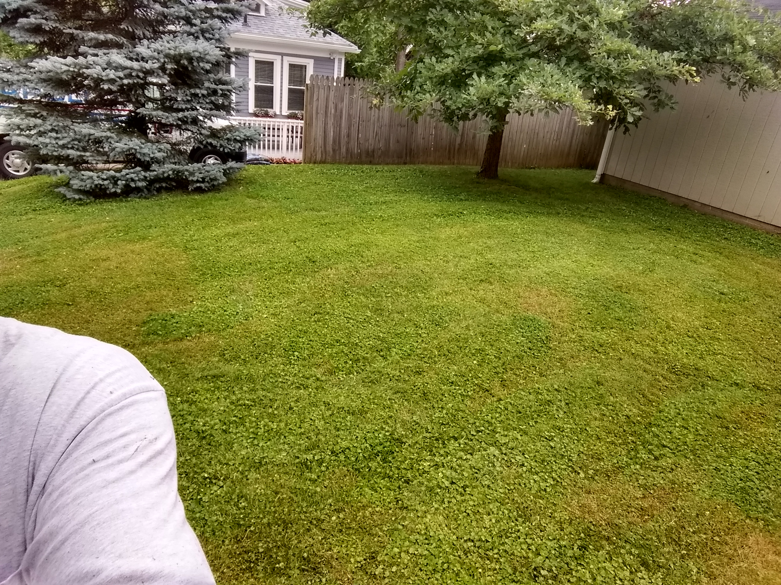 Yard mowing company in Cincinnati , OH, 45040