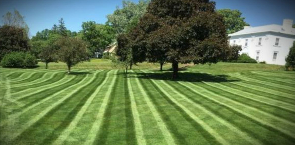 Yard mowing company in Cleveland, OH, 44104