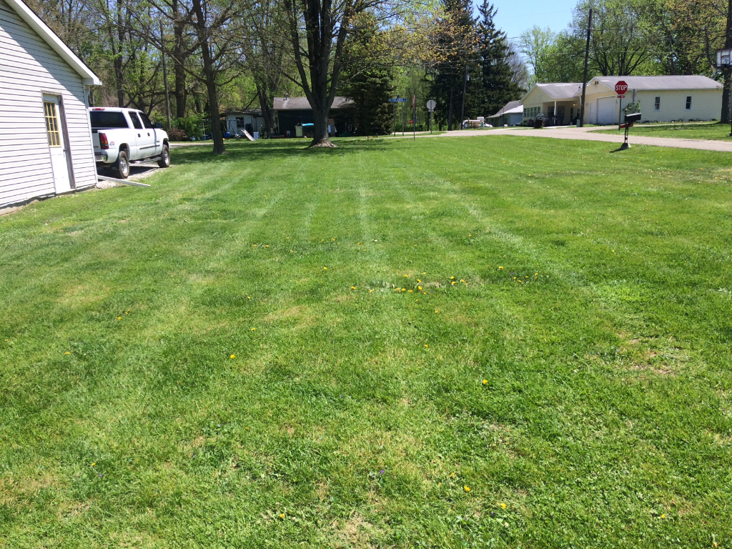 Yard mowing company in Alexandria, IN, 46001