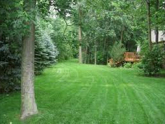 Yard mowing company in West Chicago, IL, 60185