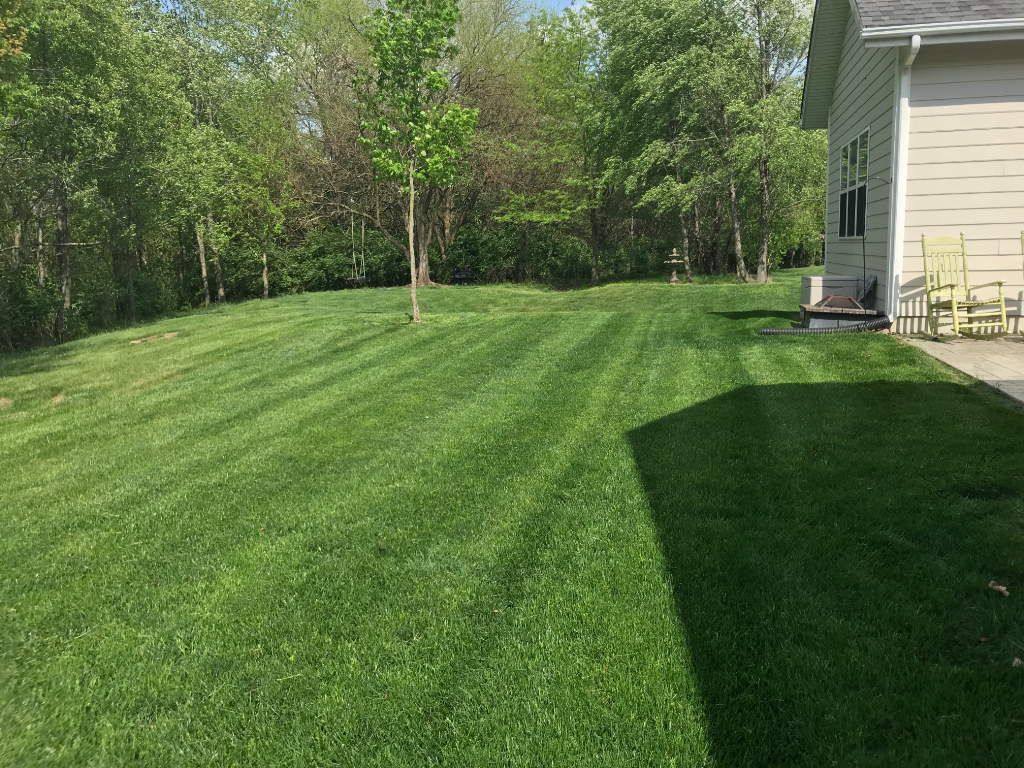 Yard mowing company in Edwardsville , IL, 62025