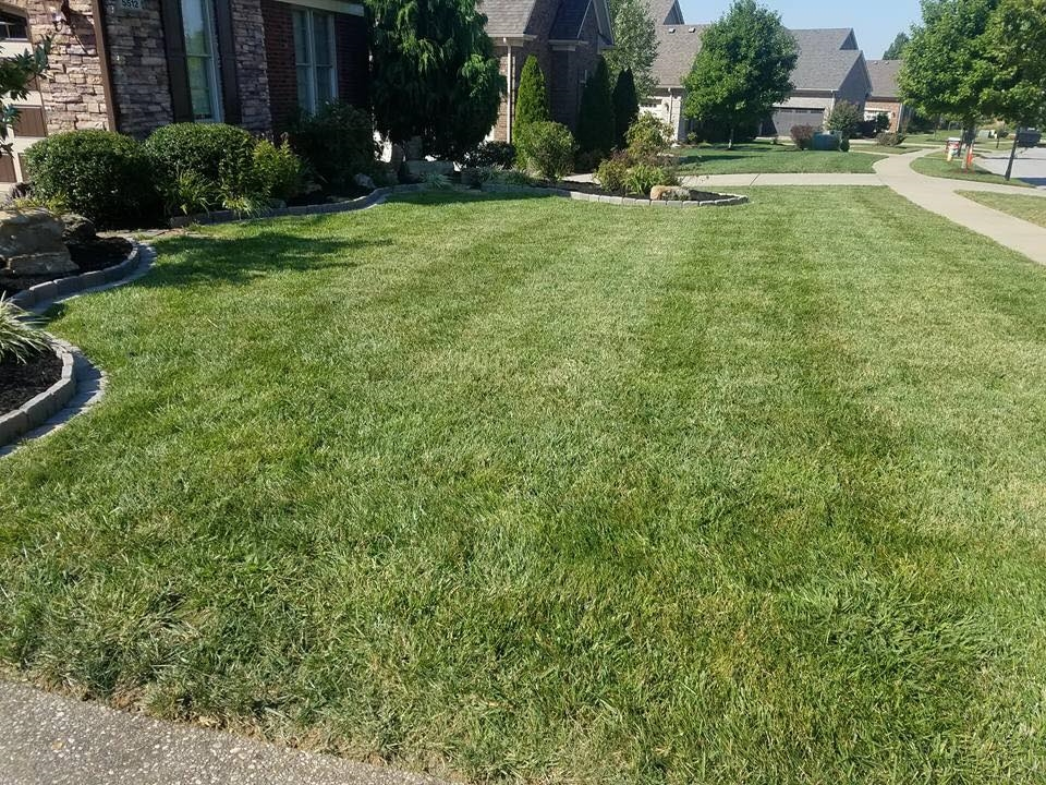 Yard mowing company in Shelbyville, KY, 40065