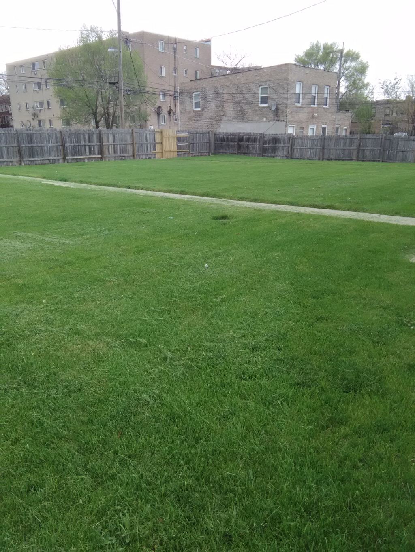 Yard mowing company in Cicero, IL, 60804