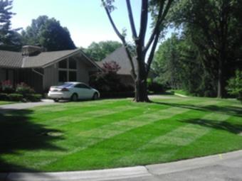 Yard mowing company in Shawnee, KS, 66218