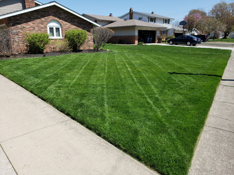 Yard mowing company in Fairview Park , OH, 44126