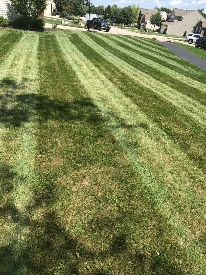 Yard mowing company in Hamilton, OH, 45011