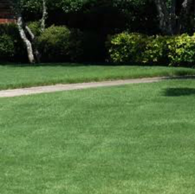 Yard mowing company in Evansville , IN, 47714