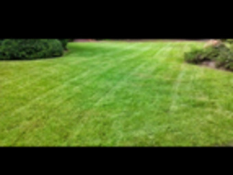 Yard mowing company in Gainesville, GA, 30506