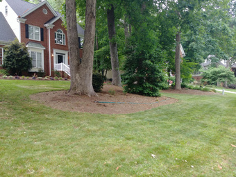 Yard mowing company in Garner, NC, 27529