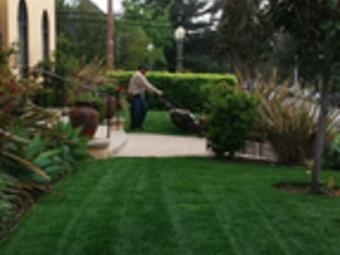 Yard mowing company in Palmdale , CA, 93591