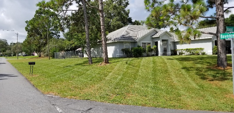 Yard mowing company in Spring Hill, FL, 34608
