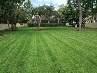 Yard mowing company in Seminole, FL, 33777