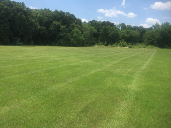 Yard mowing company in Garland, TX, 75041