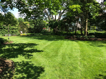 Yard mowing company in Columbus, OH, 43235