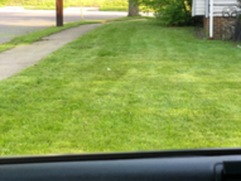 Yard mowing company in Cleveland , OH, 44105