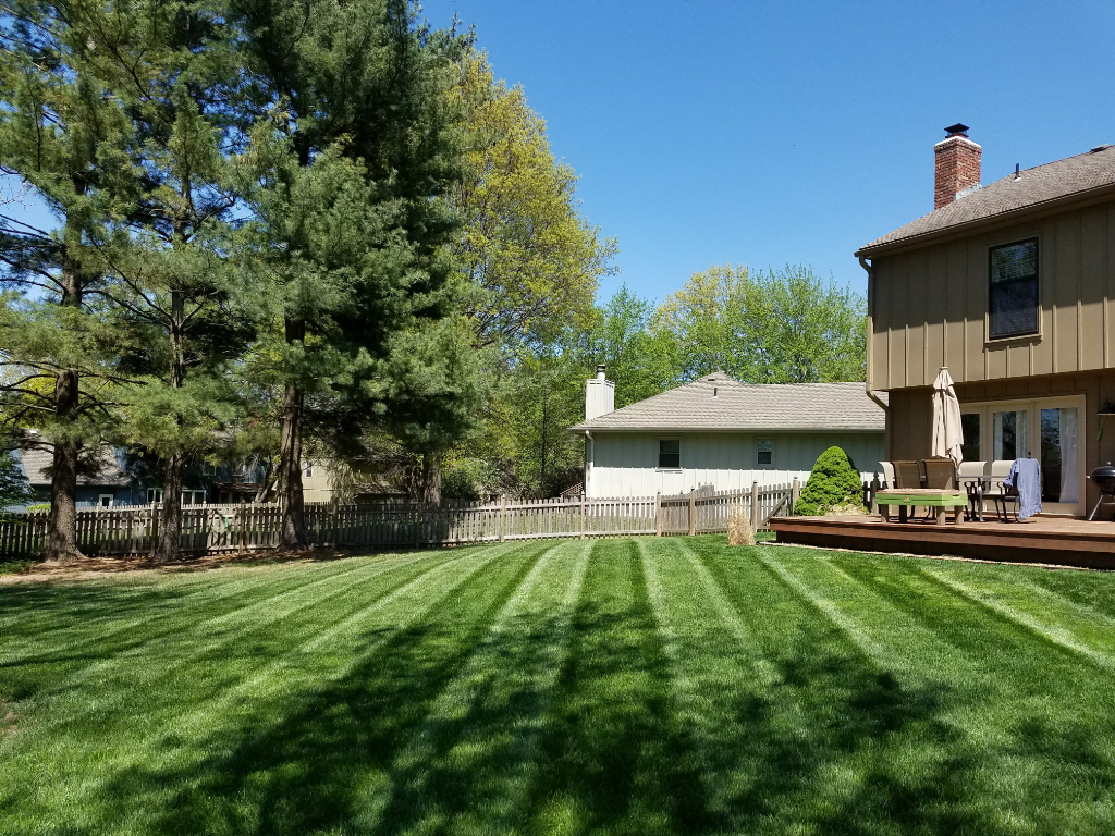 Yard mowing company in Lenexa, KS, 66215