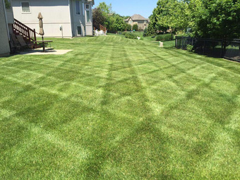 Yard mowing company in Kansas City, KS, 66104