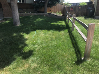 Yard mowing company in Littleton, CO, 80127