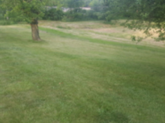 Yard mowing company in Dyer, IN, 46311