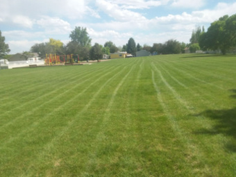 Yard mowing company in Arvada, CO, 80002