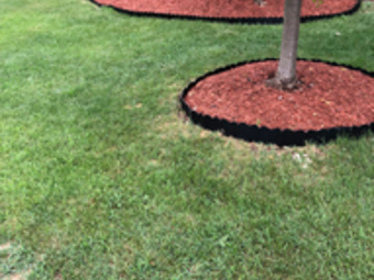 Yard mowing company in Cincinnati , OH, 45238