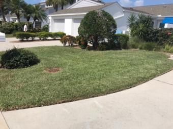 Yard mowing company in Seminole , FL, 33777