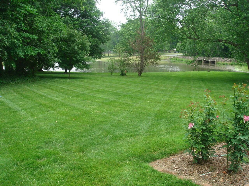Yard mowing company in Whitsett, NC, 27377