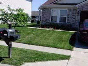 Yard mowing company in Indianapolis , IN, 46229