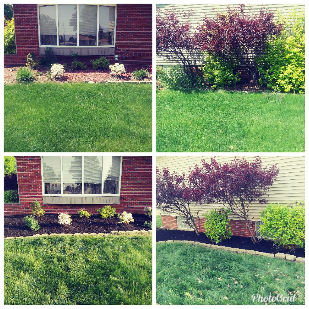 Yard mowing company in Maple Heights, OH, 44137