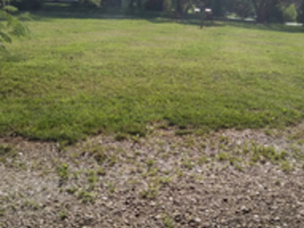 Yard mowing company in Mount Airy, NC, 27030