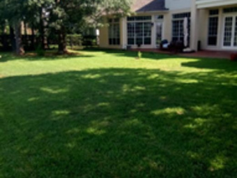 Yard mowing company in Spring, TX, 77090