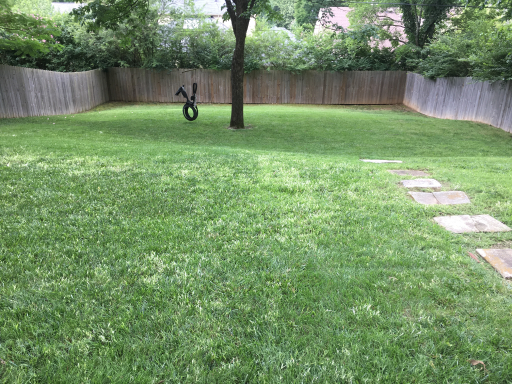Yard mowing company in Nashville, TN, 37217