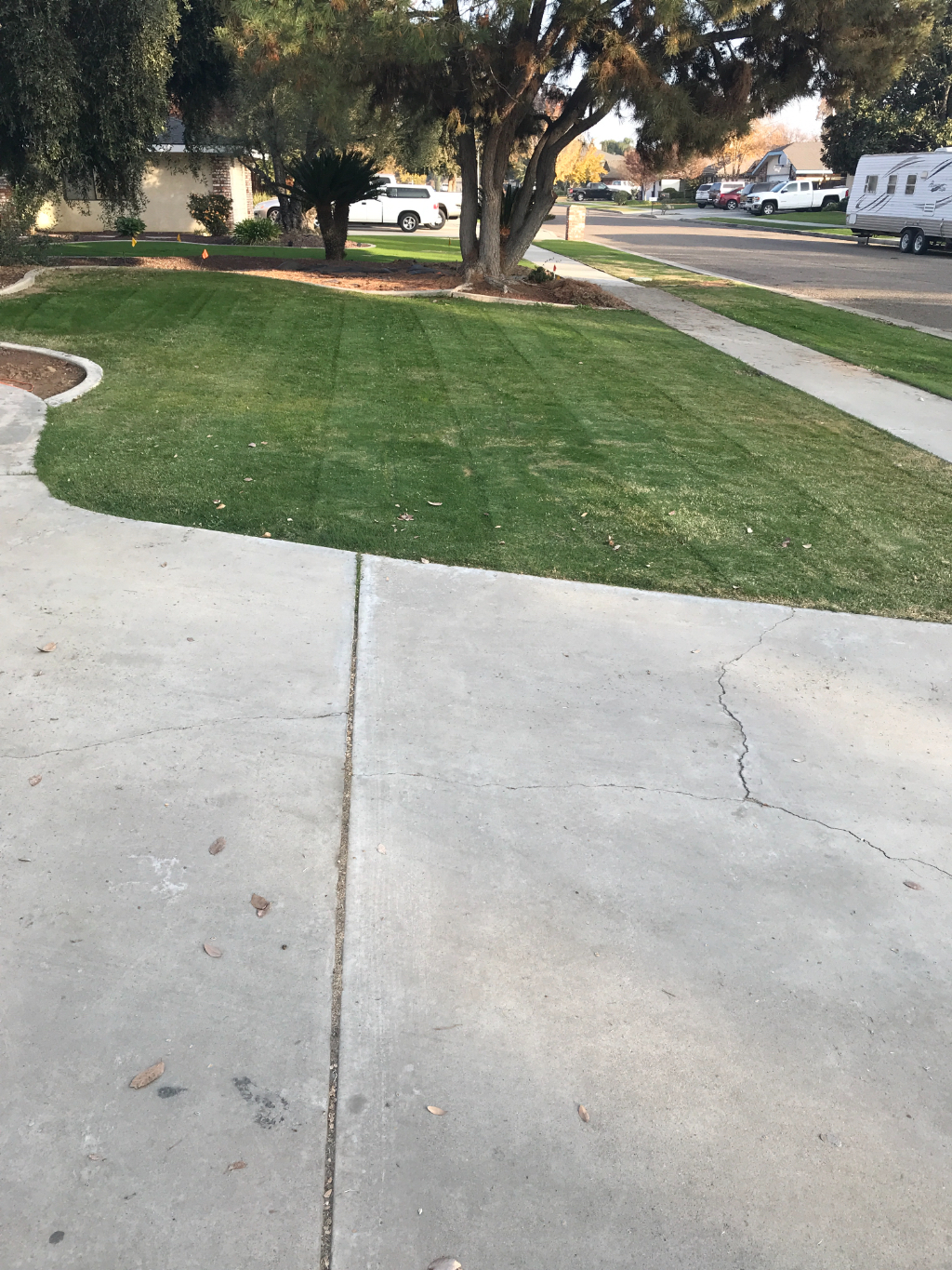 Yard mowing company in Bakersfield, CA, 93308