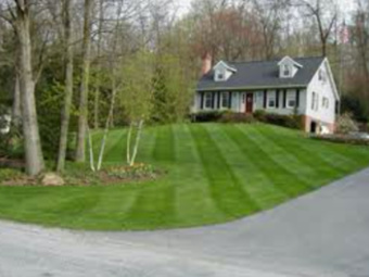 Yard mowing company in Bedford, TX, 76022