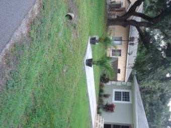 Yard mowing company in Brandon, FL, 33510
