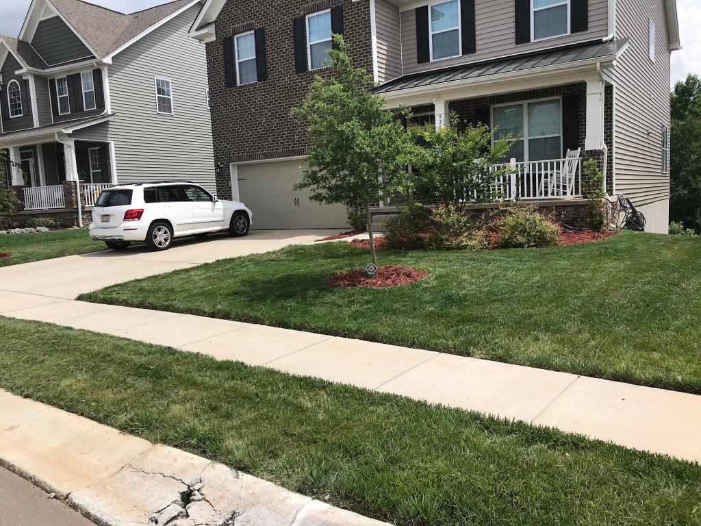 Yard mowing company in Raleigh , NC, 27608