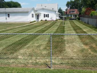 Yard mowing company in Elwood, IN, 46036