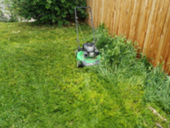 Yard mowing company in Westminster, CO, 80031