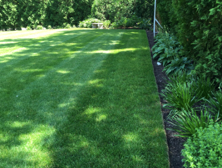 Yard mowing company in Mc Henry, IL, 60050