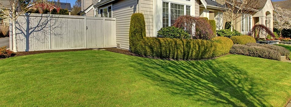 Yard mowing company in Westminster , CO, 80021