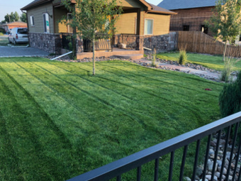 Yard mowing company in Longmont, CO, 80501