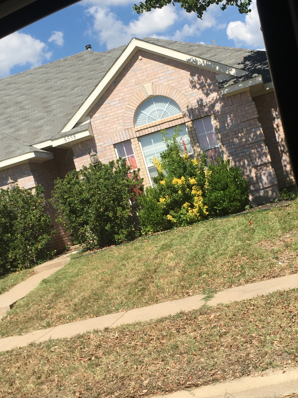 Yard mowing company in Plano , TX, 75075