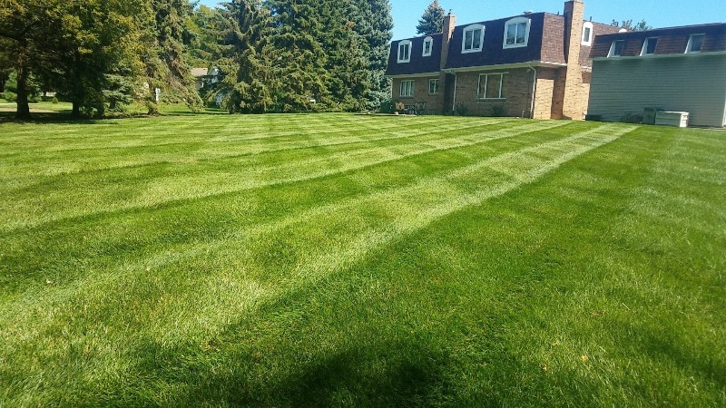 Yard mowing company in Dearborn Heights, MI, 48125